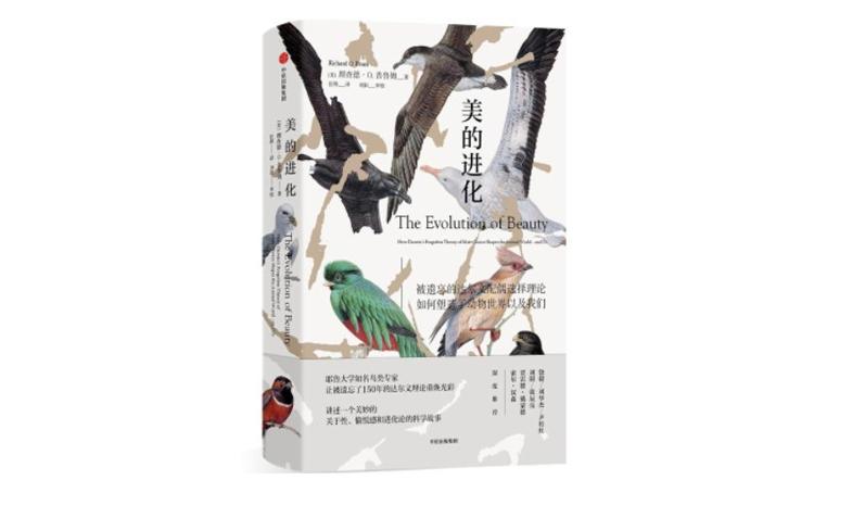 [美]理查德·O.普鲁姆:美的进化.pdf免费下载|人类进化