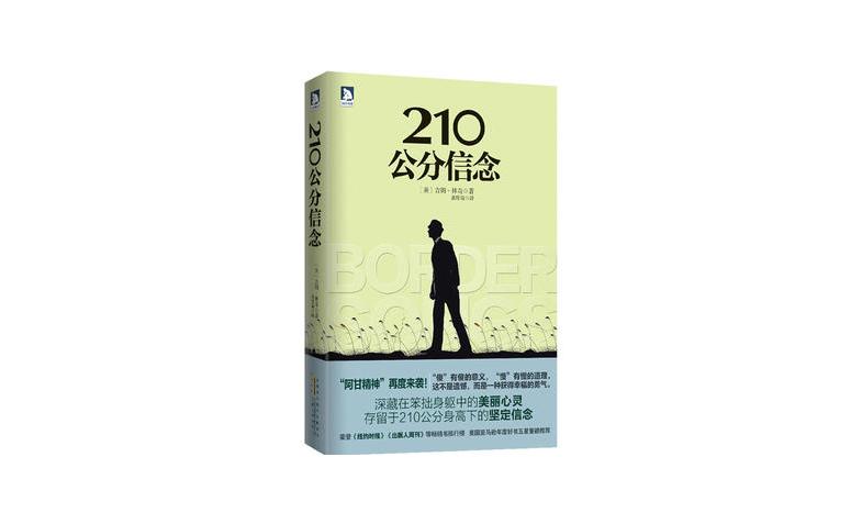 [美]吉姆·林奇:210公分信念.pdf免费下载.epub 外国小说